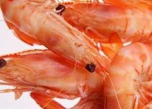 Seafood Retail Van